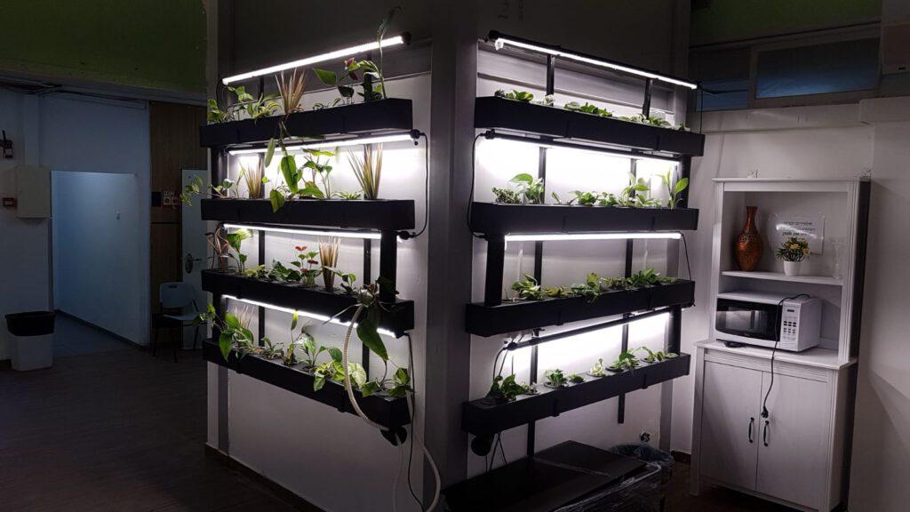 מערכת הידרופונית תשמש את תלמידי בית ספר אליאנס בתהליכי לימוד וחקר עולם החי והצומח