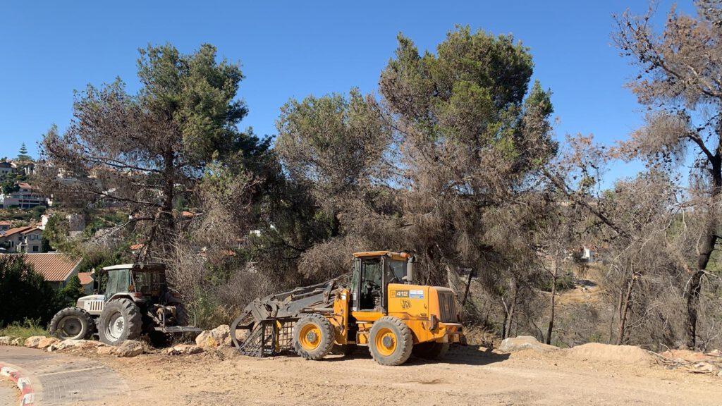 עיריית נוף הגליל החלה בפרויקט רחב היקף להכשרת אזורי חיץ בשטחי היער הסמוכים לשכונות המגורים
