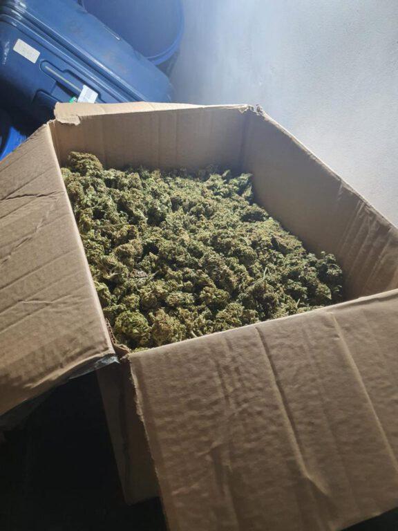 """המשטרה חשפה אתמול בקרית אתא 33 ק""""ג של חומר החשוד כסם מסוכן מסוג קנביס מוכן להפצה ועצרה תושב המקום החשוד בהחזקתו"""